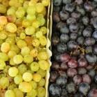 Druiven gezond?