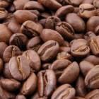 Bulletproof Coffee, meer energie en afvallen met koffie