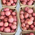 Blauwe aardappelen verlagen de bloeddruk