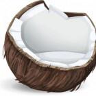 Is kokosmelk gezond?