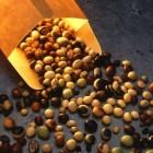 De kracht van soja: voedingswaarde, isoflavonen, groei