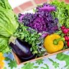 Nieuwe richtlijn gezonde voeding (2015)