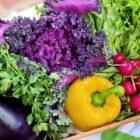Gezond eten als Obsessie