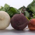De rode biet, Beta vulgaris vulgaris - voedsel en medicijn