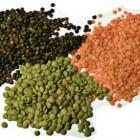 Linzen: gezondheidsvoordelen en voedingswaarde van de linze