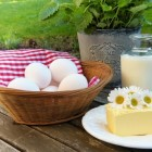 Calcium: Voedingsmiddelen, functie & tekort aan dit mineraal