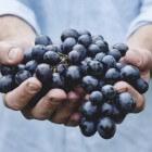 Druiven: Voordelen voor gezondheid van deze vruchten