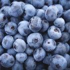 Bosbessen: Voordelen voor gezondheid van de vruchten