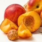 Nectarines: Voordelen voor de gezondheid van deze vrucht