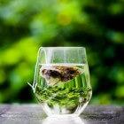 Groene thee: gezondheidsvoordelen en soorten groene thee