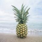 Ananas: gezondheidsvoordelen, voedingswaarde en bewaren