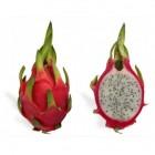 Drakenfruit of pitaja: gezondheidsvoordelen & voedingswaarde