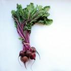 Rode bieten: gezondheidsvoordelen en voedingswaarde