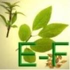 Geneeskrachtige Gezonde Kruiden E - F
