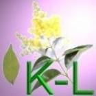 Geneeskrachtige Gezonde Kruiden K - L