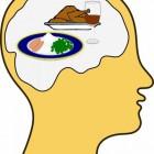 Hersenen: gezonde voeding voor de hersenen