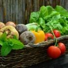 Stoffen in onze voeding: koolhydraten, vezels en zout