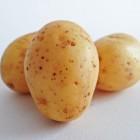 Aardappel als geneeskruid