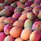 Antioxidanten in groenten en fruit