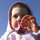 Speen voor de baby: voordelen en nadelen van de fopspeen