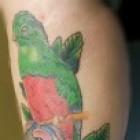 Mag je zwemmen met een tattoo?