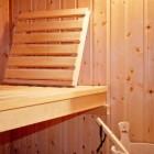 Wellness: de sauna