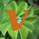 Geneeskrachtige planten index: V
