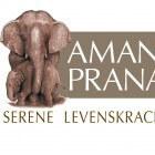 Amanprana: waar te koop?