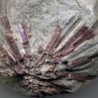Lepidoliet steen voor zelfvertrouwen, zuivering en vrede