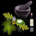 Verschil tussen homeopathie en kruidengeneeskunde