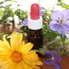 Homeopathie: Klassiek & klinisch
