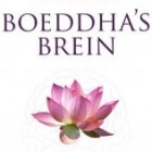 Mindfulness: invloed op je hersens en leven: Boeddha's Brein