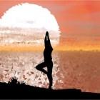 Yogahoudingen – padma mayurasana (pauwhouding in lotus)