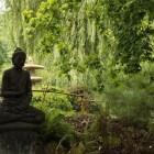 Zenmeditatie – verlichting (satori) door bliksemsnel inzicht