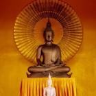 Geschiedenis van yoga – de begrippen yoga en yogi