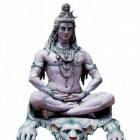 Incarnaties van Vishnu – Matsya, de mythische vis