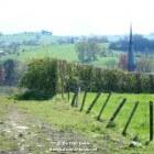 Plaatsen voor stilte en spiritualiteit in Limburg en België