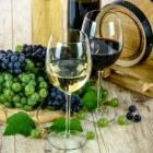 Hoe alcohol in je lichaam komt en wordt afgebroken