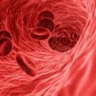 Celgroei van tumoren
