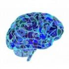 Epilepsie door hersenbeschadiging: symptomen en oorzaken