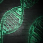 Mitochondriaal DNA depletie syndroom (MDS)