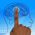 Epilepsie: de vallende ziekte