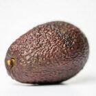 Zwanger en avocado