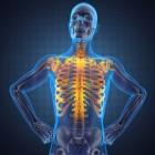 Trillende invloed van acetylcholine op het lichaam