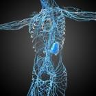 Neuropatische pijn: ontstaan, behandeling en leven met pijn