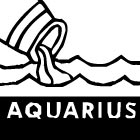 Horoscoop: wat heeft 2017 voor de Waterman in petto?