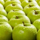 Afvallen met appels