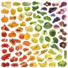Vrije lijst van negatieve calorie voeding