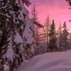 Welvaart en een winterdepressie