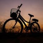 Vaker fietsen, de voordelen en wat bespaar je?